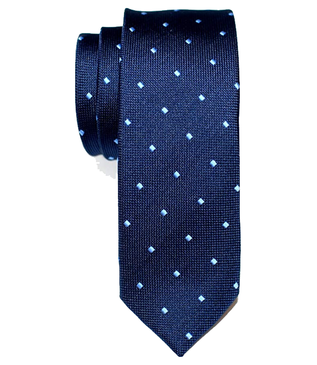 Dotted navy-blue tie with light-blue dots by Retreez