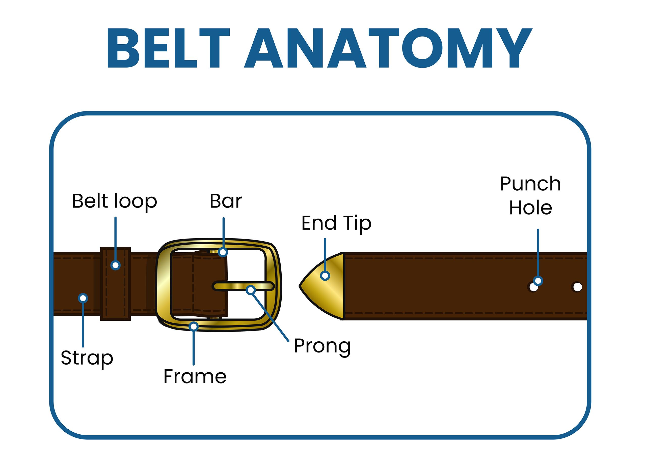 men's belts anatomy: all parts