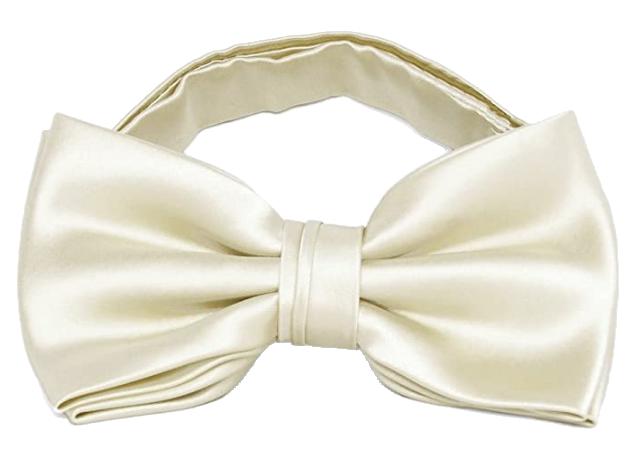 Pre-tied beige bow tie by TieMart